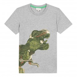 T-shirt dino tropical gris...