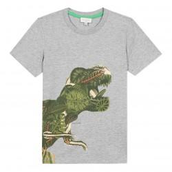 T-shirt dino tropical gris...