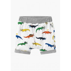 Short reversible crocodiles...