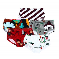 Lot de 5 culottes Junior...