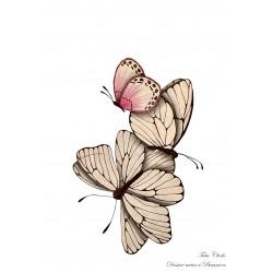 Affiche A4 papillons gris
